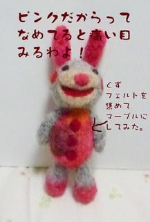 きょんちゃんの1.JPG